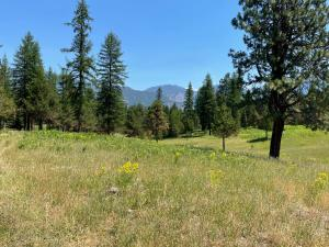Nhn-Evergreen-Acres, Trout Creek Montana Real Estate Listings