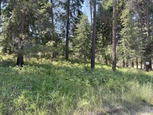 Lot 17-Cornerstone-Road, Thompson Falls Montana Real Estate Listings