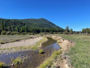 Nhn-Graham-Lane, Trout Creek Montana Real Estate Listings
