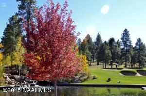 Pine Canyon land Fountain 2