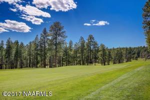 50_Golf Course
