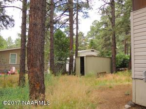 Forested Lot