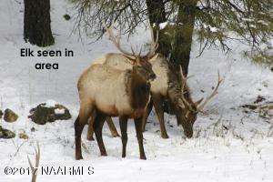 Elk seen in area (4)