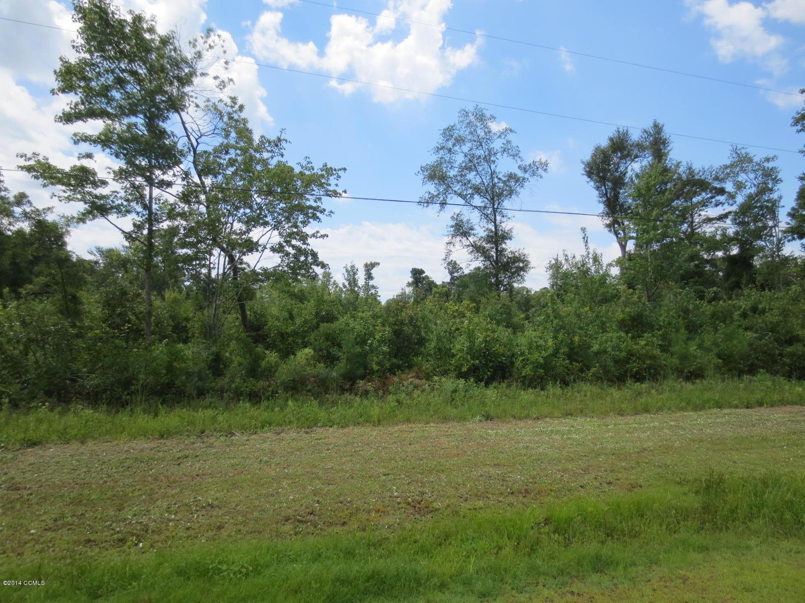 TBD Newport Loop Road- Newport- North Carolina, ,Agriculture,For sale,Newport Loop,11500891