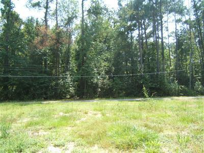 47 Worth Street, Tabor City, North Carolina 28463, ,Residential land,For sale,Worth,20619430