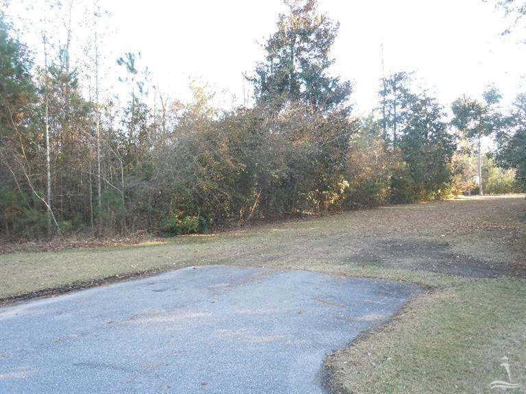 185 Mcgougan Street, Tabor City, North Carolina 28463, ,Residential land,For sale,Mcgougan,20688430
