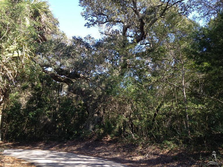 16 Poor Mans Pepper, Bald Head Island, North Carolina 28461, ,Residential land,For sale,Poor Mans Pepper,20691611