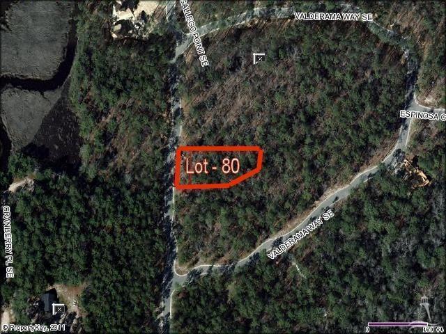 3036 Valderama Way, Bolivia, North Carolina 28422, ,Residential land,For sale,Valderama,20680742