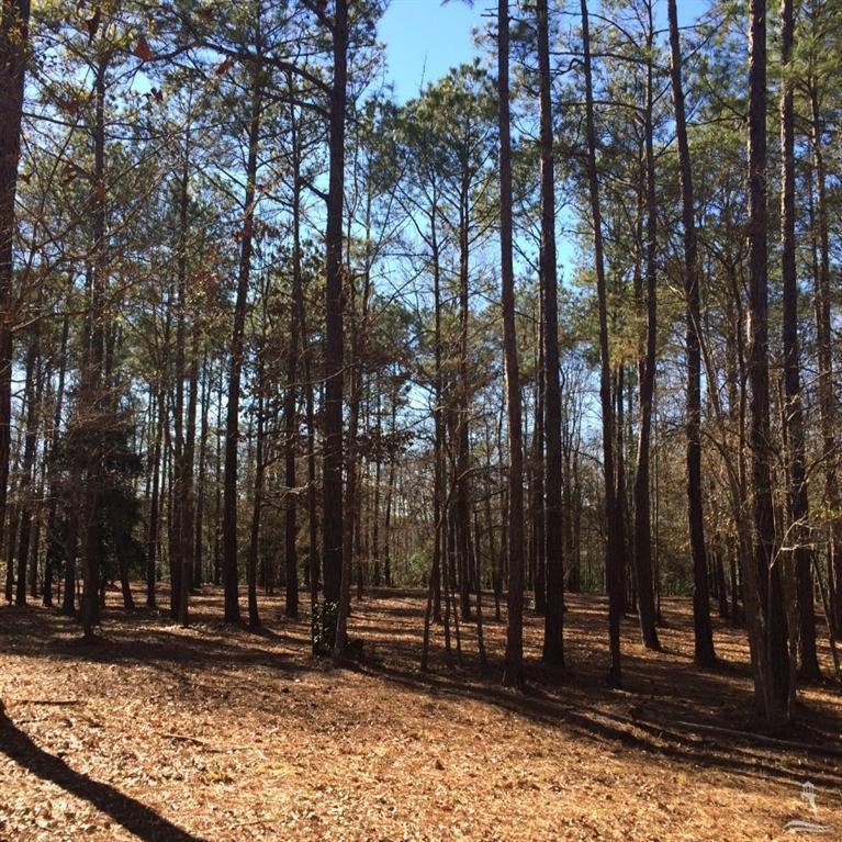 593 Ashbury Drive- Bolivia- North Carolina, ,Residential land,For sale,Ashbury,20689003