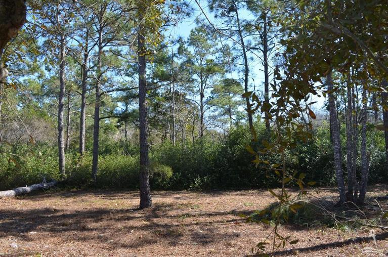 686 Loreauville Drive, Supply, North Carolina, ,Residential land,For sale,Loreauville,20689404