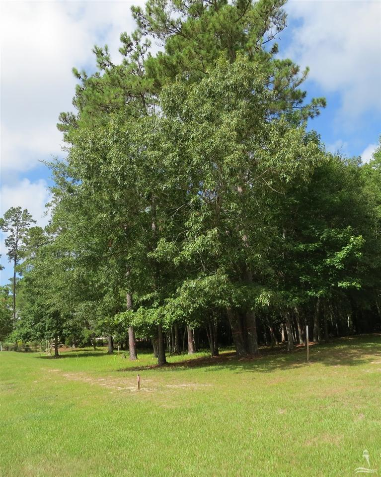 73 Plantation Passage Drive, Bolivia, North Carolina 28422, ,Residential land,For sale,Plantation Passage,20684535