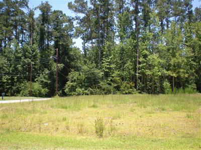 0 Near 103 Foy St/Worth St Street, Tabor City, North Carolina 28463, ,Residential land,For sale,Near 103 Foy St/Worth St,20639366