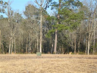 46 Creekwood Lane, Tabor City, North Carolina 28463, ,Residential land,For sale,Creekwood,20644766
