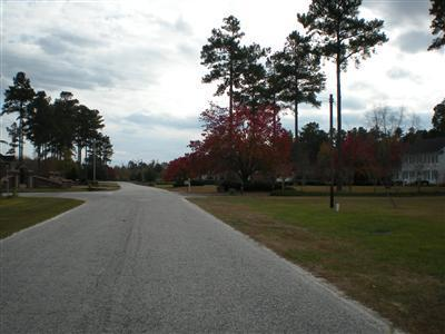 198 Canal Street, Tabor City, North Carolina, ,Residential land,For sale,Canal,20652927