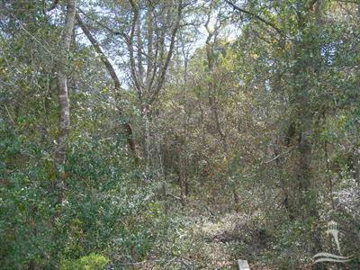 1051 Ferry Landing Drive, Supply, North Carolina 28462, ,Residential land,For sale,Ferry Landing,20656469