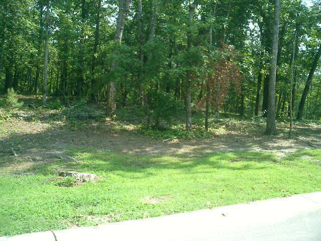 3046 Valderama Way, Bolivia, North Carolina 28422, ,Residential land,For sale,Valderama,20678139