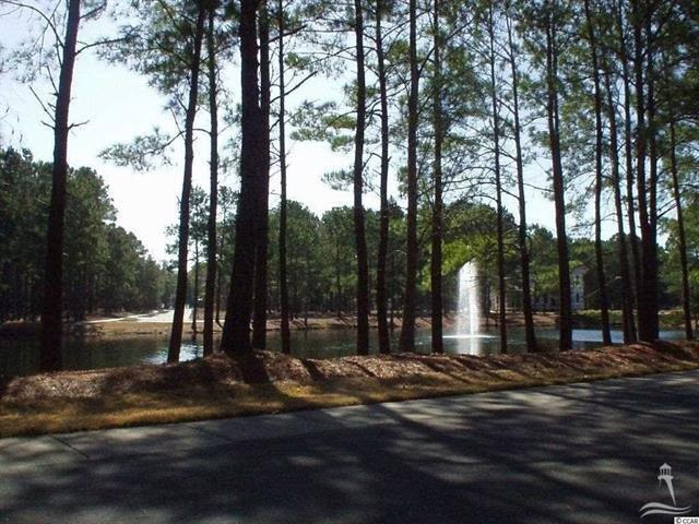 9176 Gates Avenue, Calabash, North Carolina 28467, ,Residential land,For sale,Gates,20688169