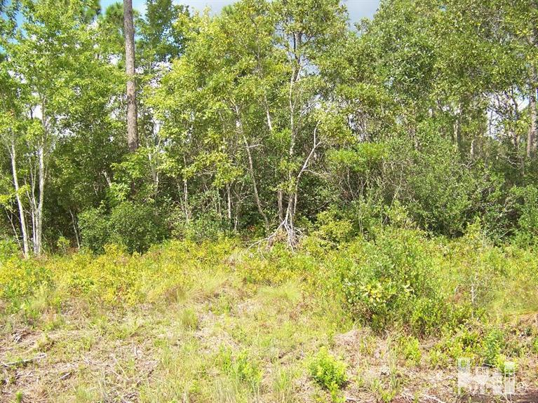 1220 Beaufort Road, Southport, North Carolina, ,Residential land,For sale,Beaufort,30529561
