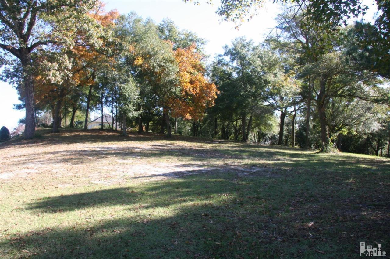 Carolina Plantations Real Estate - MLS Number: 30530842