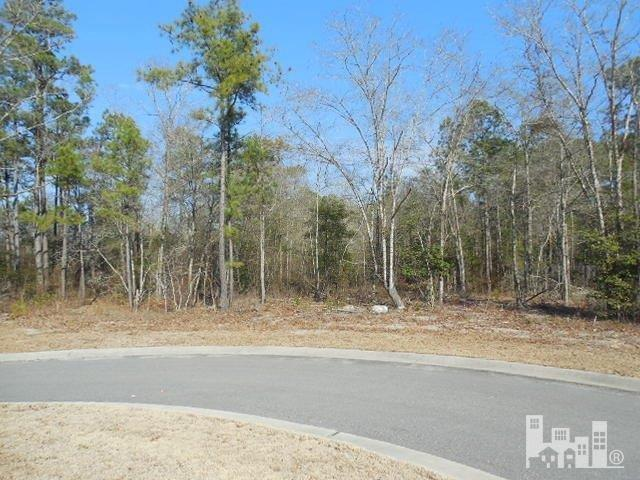 150 Cherry Laurel Drive, Wallace, North Carolina, ,Residential land,For sale,Cherry Laurel,30520534