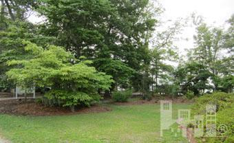 19 Schley Avenue, Lake Waccamaw, North Carolina, ,Residential land,For sale,Schley,30466915