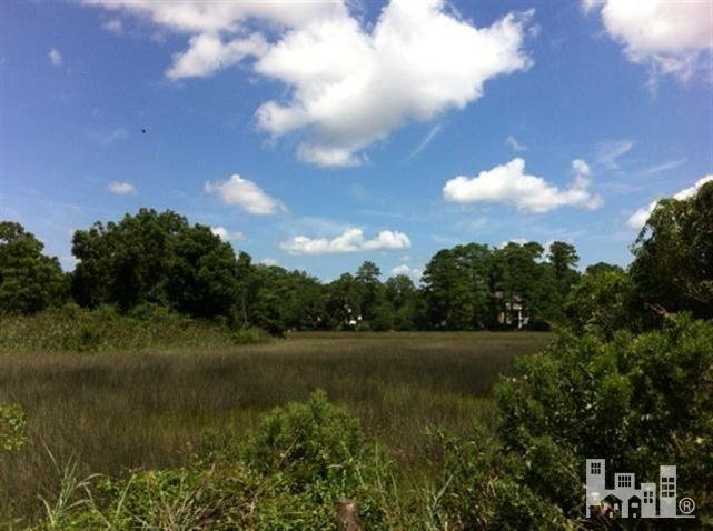 1113 Pine Grove Drive, Wilmington, North Carolina, ,Residential land,For sale,Pine Grove,30494796