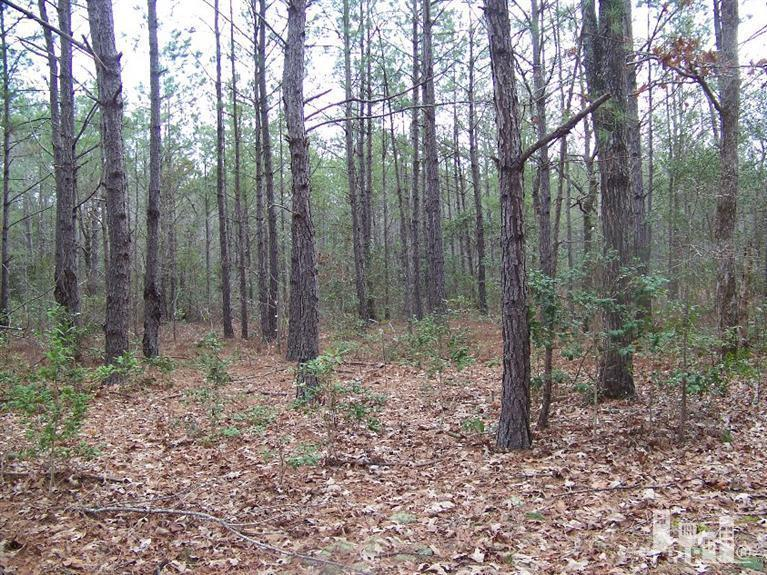 159 North Shore Drive, Southport, North Carolina 28461, ,Residential land,For sale,North Shore,30516276