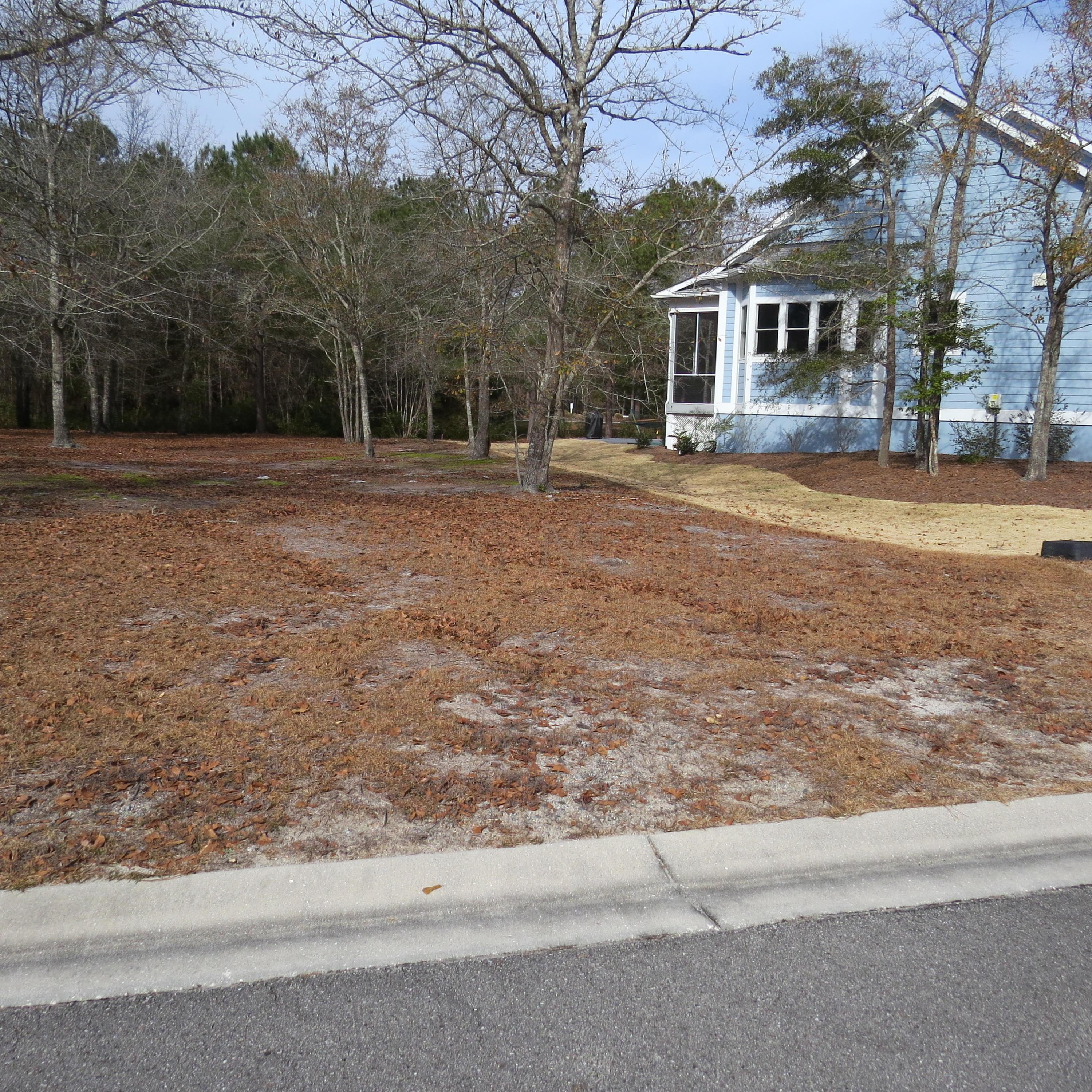 Carolina Plantations Real Estate - MLS Number: 100000511
