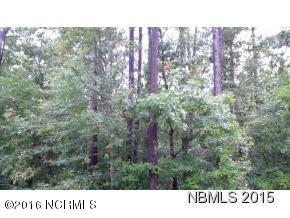 107 Long Creek Drive, Havelock, North Carolina 28532, ,Residential land,For sale,Long Creek,100001738