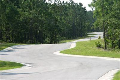 517 Estevao Lane, Bolivia, North Carolina, ,Residential land,For sale,Estevao,100002179