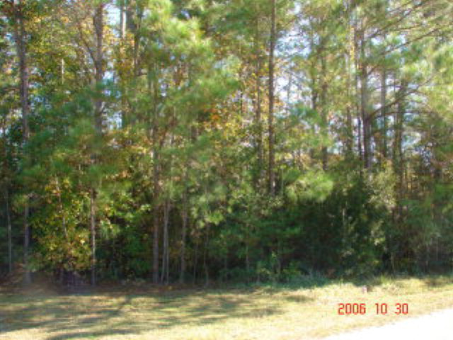 305-1 Crosswood Drive, Holly Ridge, North Carolina 28445, ,Residential land,For sale,Crosswood,40202270