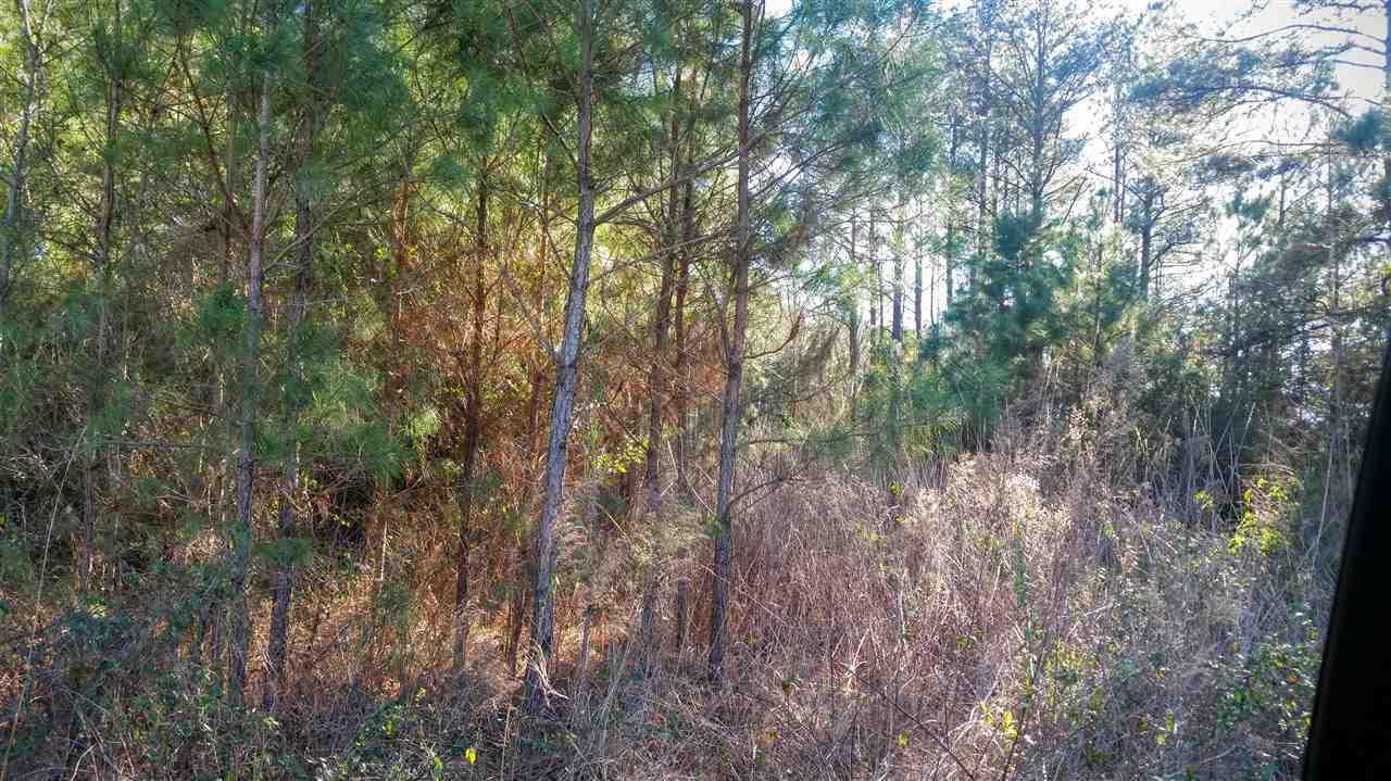 1138-39 Ben Williams Road, Richlands, North Carolina 28574, ,Undeveloped,For sale,Ben Williams,80173616