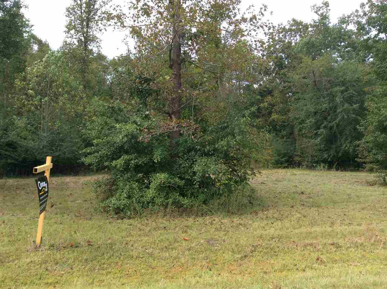 163 Old Beechtree Lane, Jacksonville, North Carolina 28540, ,Residential land,For sale,Old Beechtree,80159439