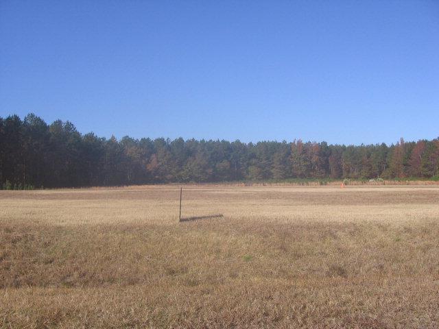 7269 Stalbridge Road, Sims, North Carolina, ,Undeveloped,For sale,Stalbridge,60047265