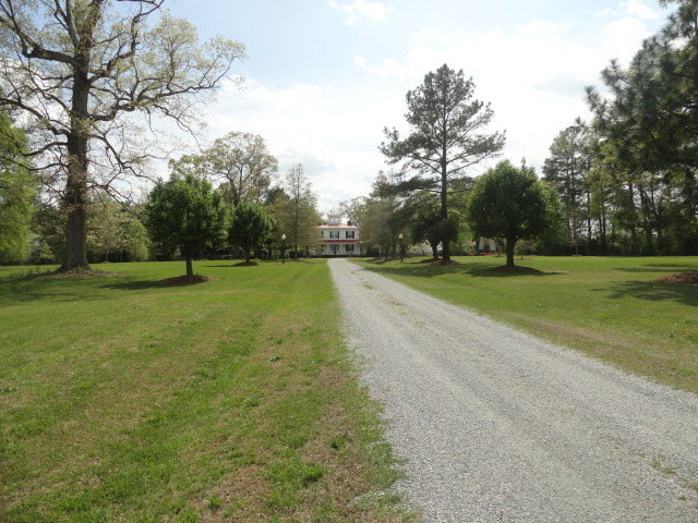 347 Nc 42-43 W Highway, Pinetops, North Carolina 27864, 5 Bedrooms Bedrooms, 11 Rooms Rooms,3 BathroomsBathrooms,Single family residence,For sale,Nc 42-43 W,60049648