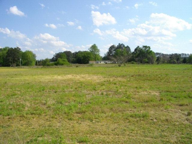 3639 Lori Ann Road, Bailey, North Carolina, ,Undeveloped,For sale,Lori Ann,60047335