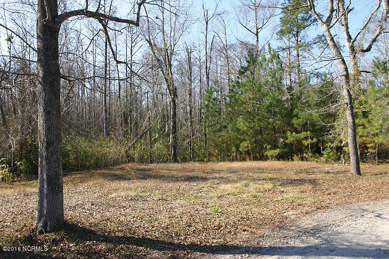 1035 Holly Shelter Estate Road, Rocky Point, North Carolina, ,Residential land,For sale,Holly Shelter Estate,100012411
