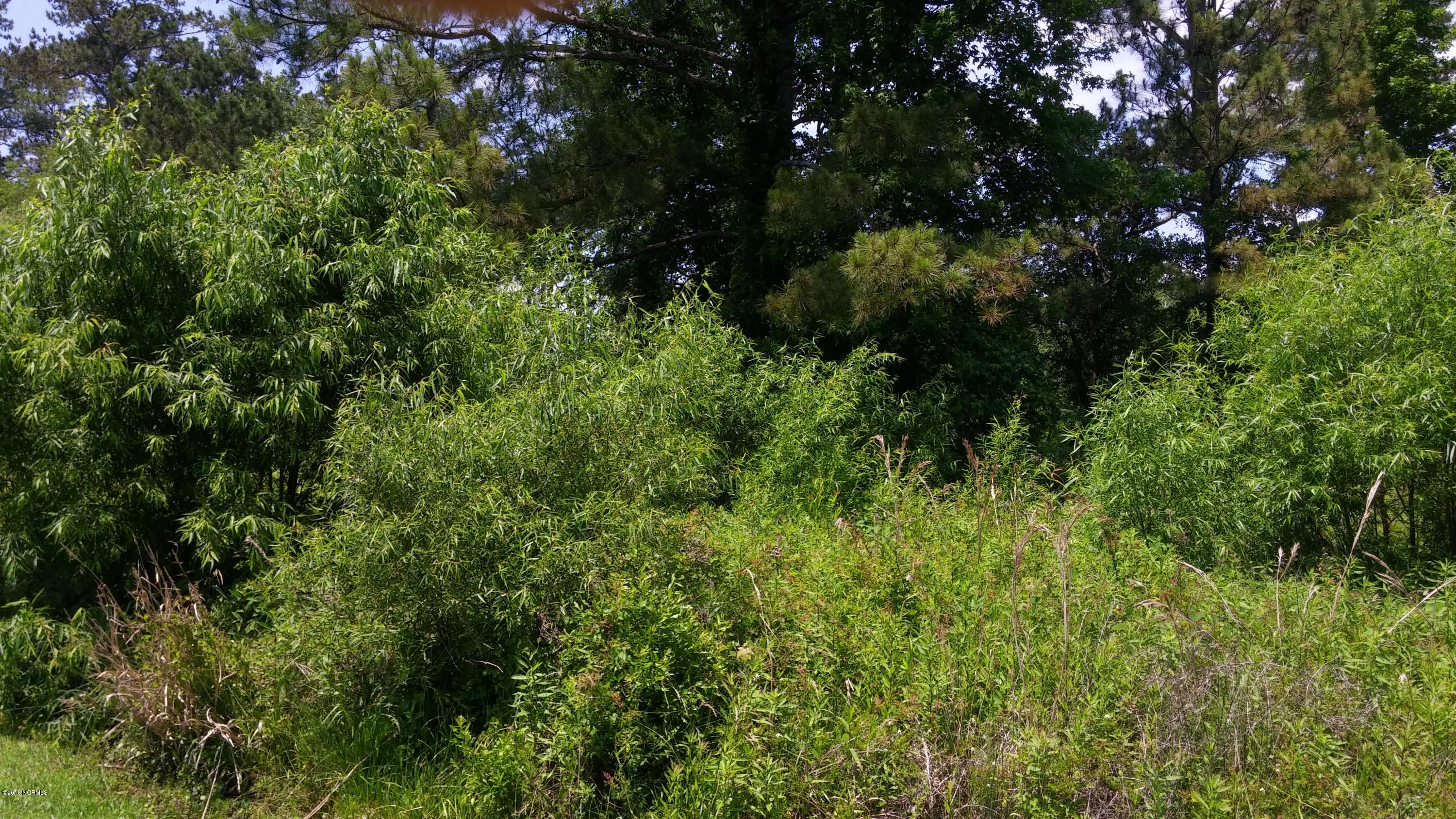 327 Chadwick Shores Drive, Sneads Ferry, North Carolina, ,Undeveloped,For sale,Chadwick Shores,100010096