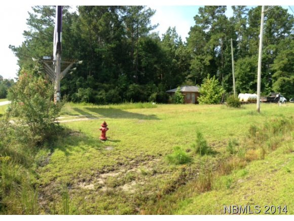 4123 Dr Martin Luther King Boulevard, New Bern, North Carolina, ,For sale,Dr Martin Luther King,90095806