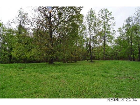 115 Lugano Road, New Bern, North Carolina 28562, ,Residential land,For sale,Lugano,90093188
