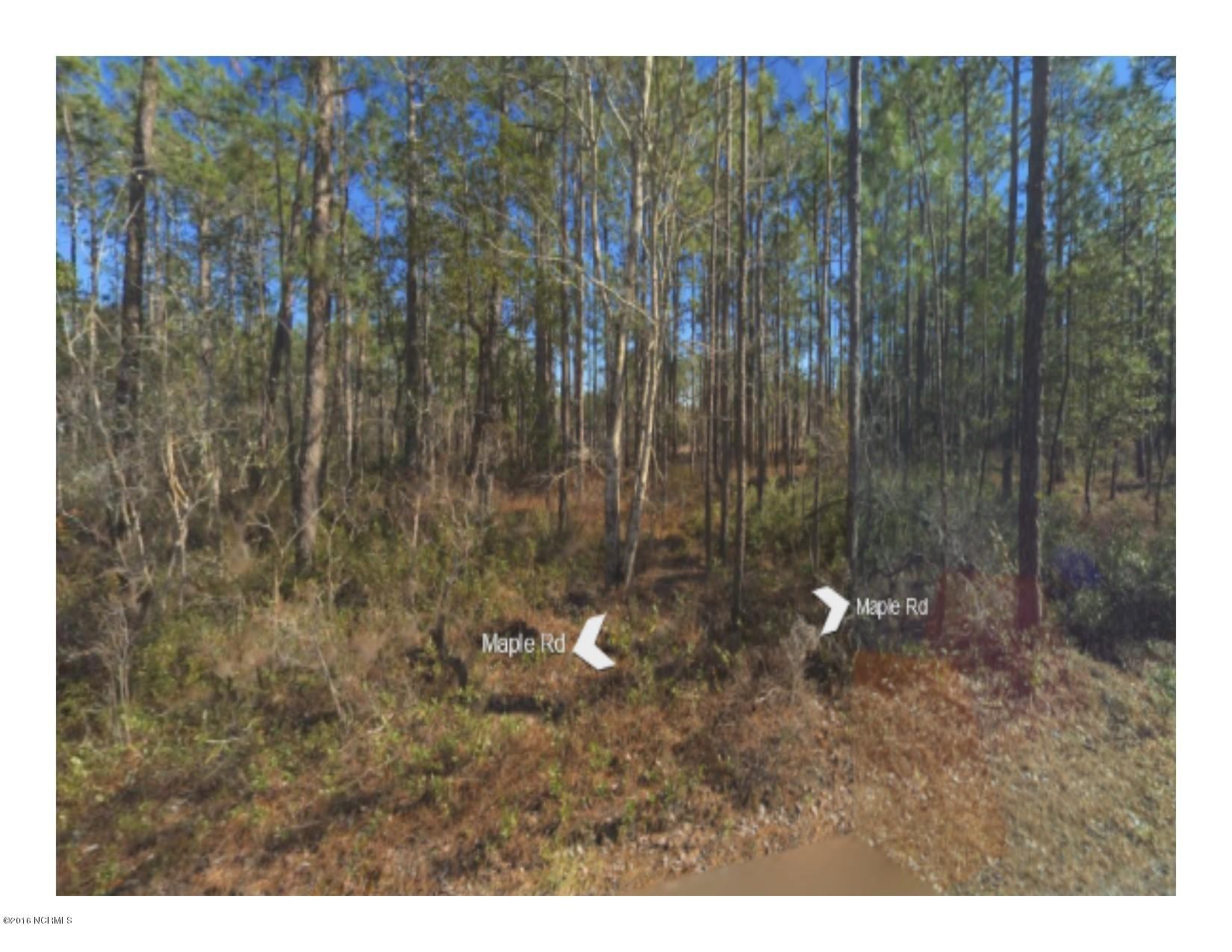 1160 Maple Road, Southport, North Carolina 28461, ,Residential land,For sale,Maple,100018018