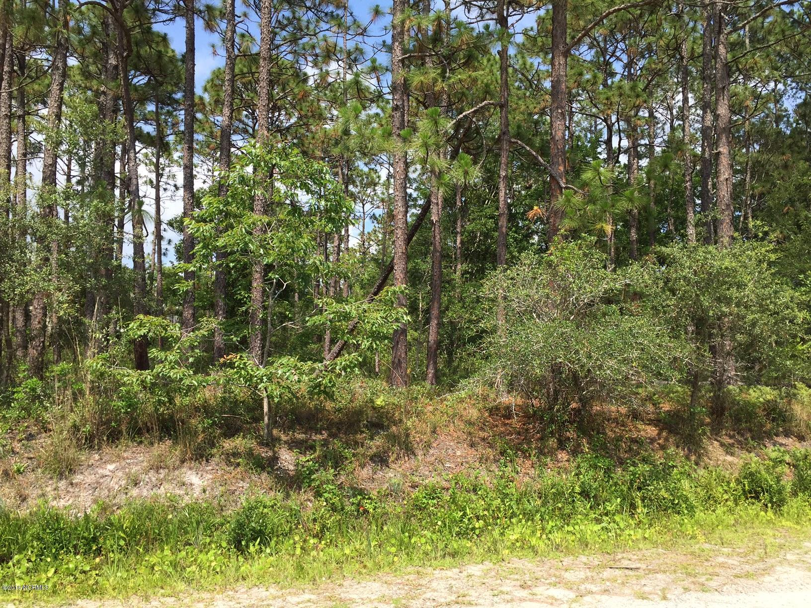210 Darnell Road, Southport, North Carolina 28461, ,Residential land,For sale,Darnell,100021224