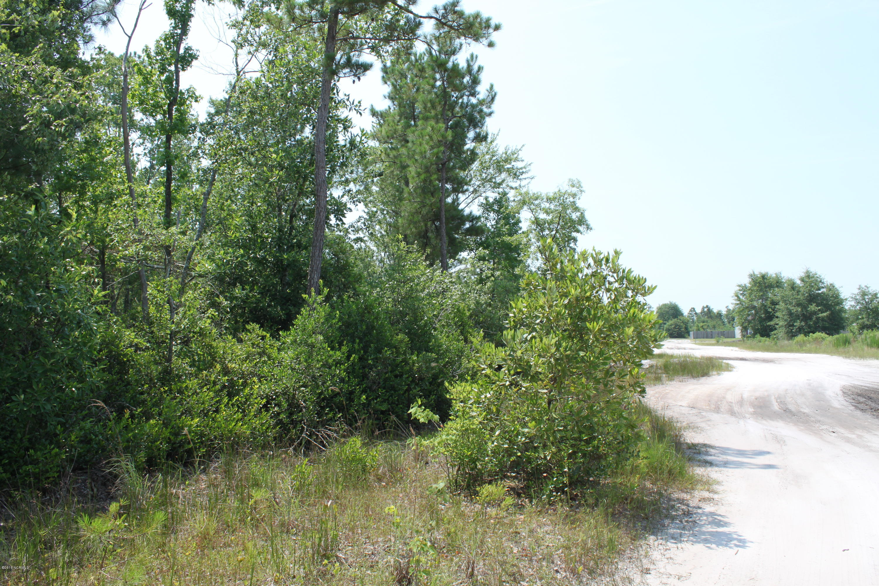 116 Blueberry Fields Road- Maple Hill- North Carolina, ,Residential land,For sale,Blueberry Fields Road,100019746