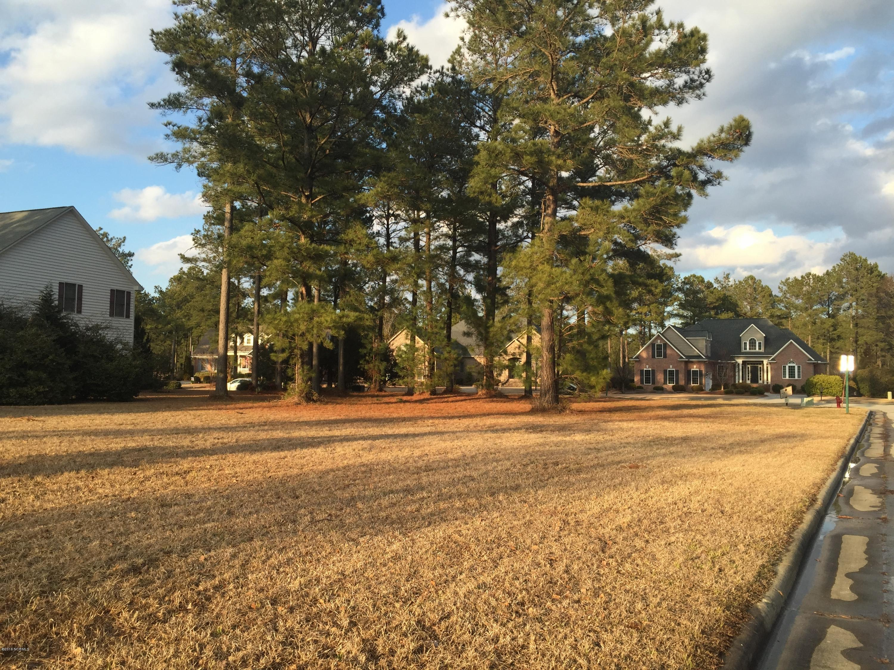 219 Ticino Court, New Bern, North Carolina, ,Residential land,For sale,Ticino,90098059