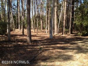 Carolina Plantations Real Estate - MLS Number: 100022549