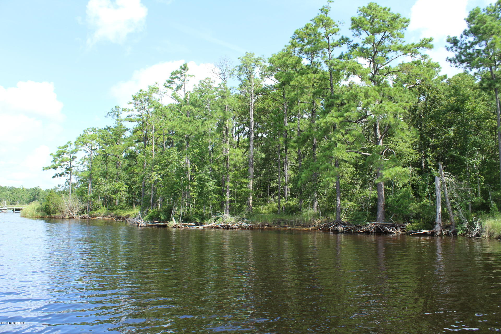 100 Canvasback Drive, Maribel, North Carolina, ,Residential land,For sale,Canvasback,100023863