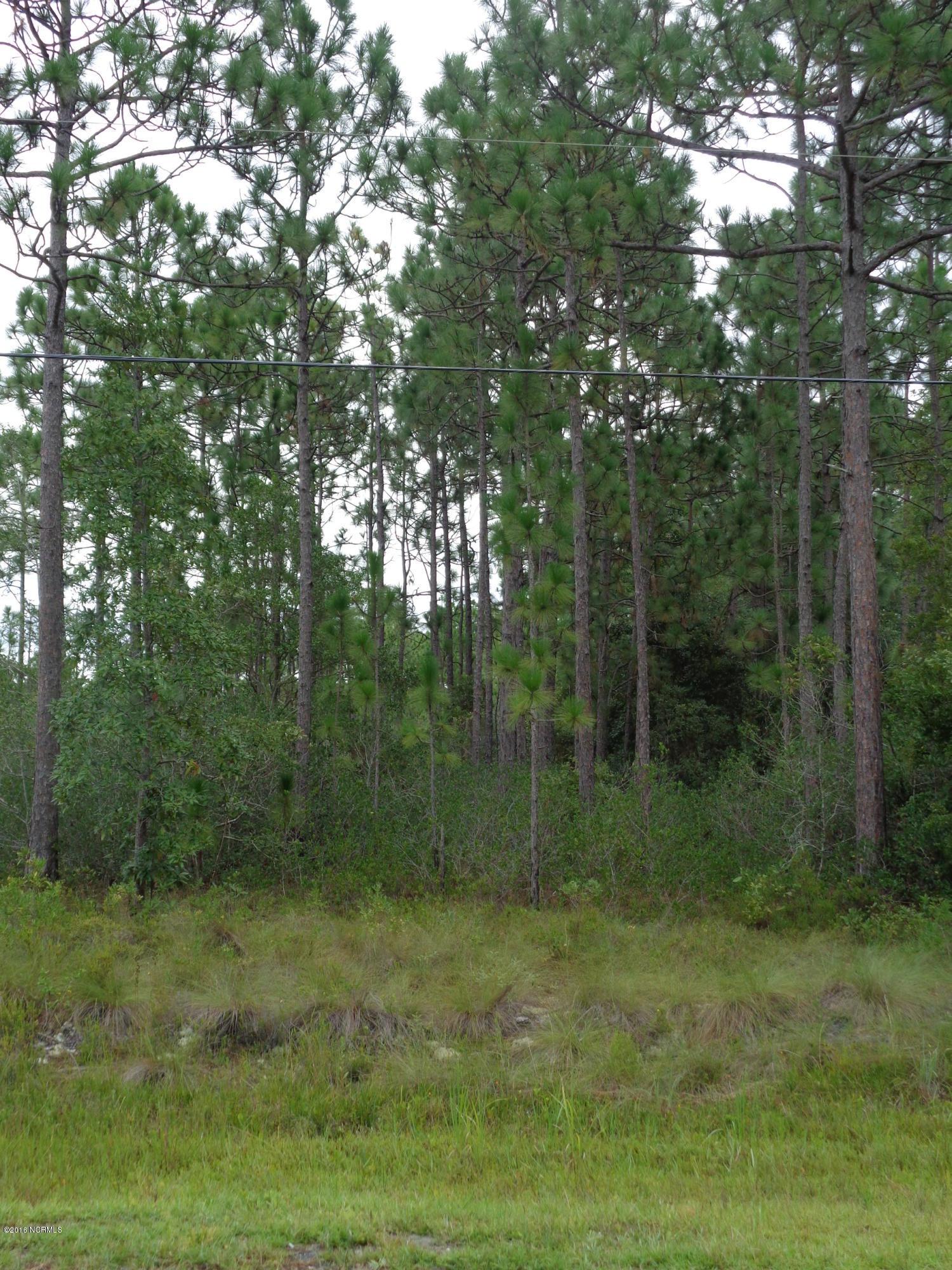 1284 Lexington Road, Southport, North Carolina, ,Wooded,For sale,Lexington,20638358