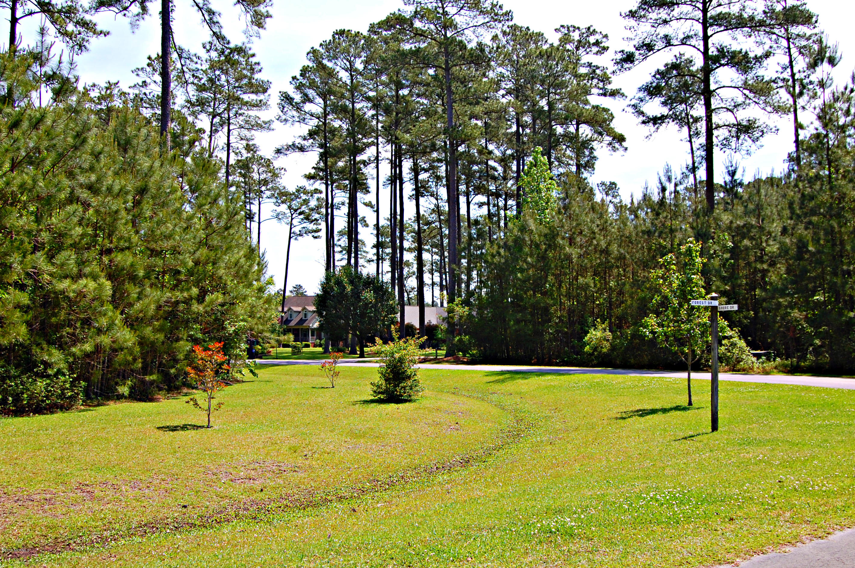 Lot 25 Forest Drive- Oriental- North Carolina, ,Residential land,For sale,Forest,100029183