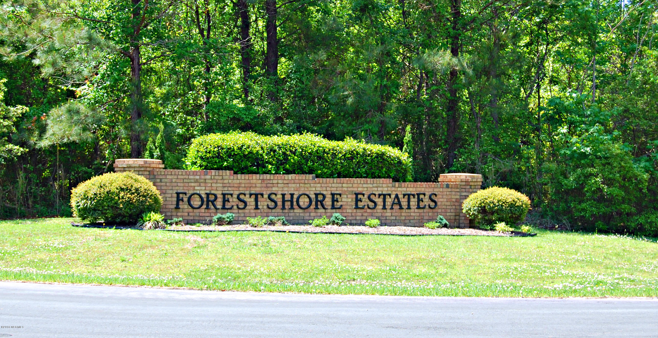 Lot 25 Forest Drive, Oriental, North Carolina, ,Residential land,For sale,Forest,100029183