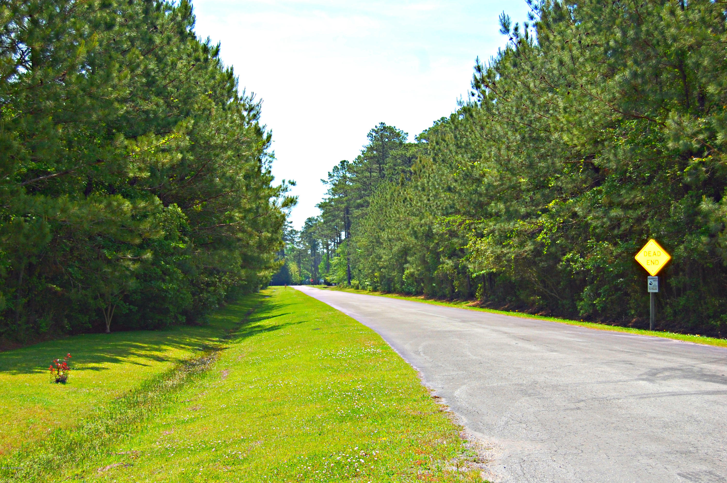 Lot 36 Straight Road, Oriental, North Carolina, ,Residential land,For sale,Straight,100029190